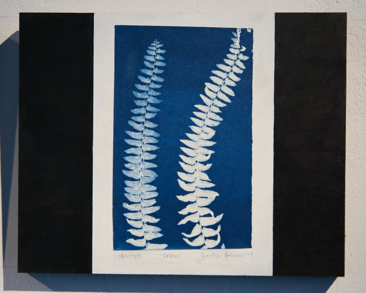 Nook of the Ferns. Cyanotype mounted on panel © Jonathan Brennan, 2019