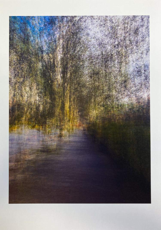 Cyprus Avenue II. Limited edition giclée print © Jonathan Brennan Art