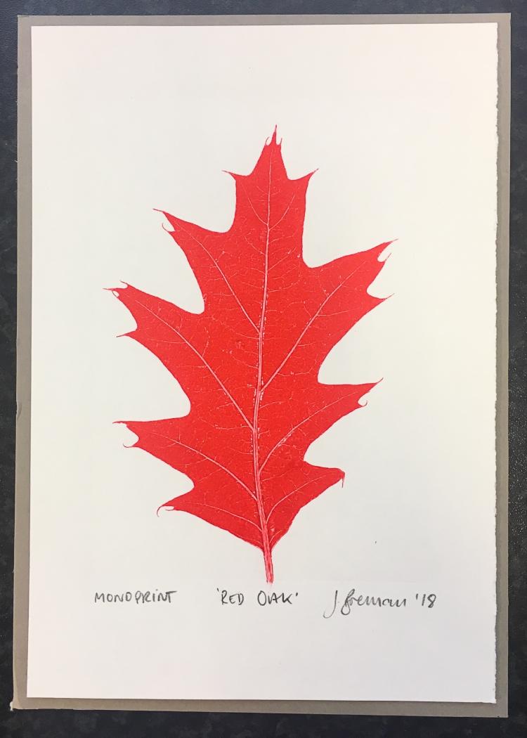 Red Oak II - monoprint © Jonathan Brennan, 2018