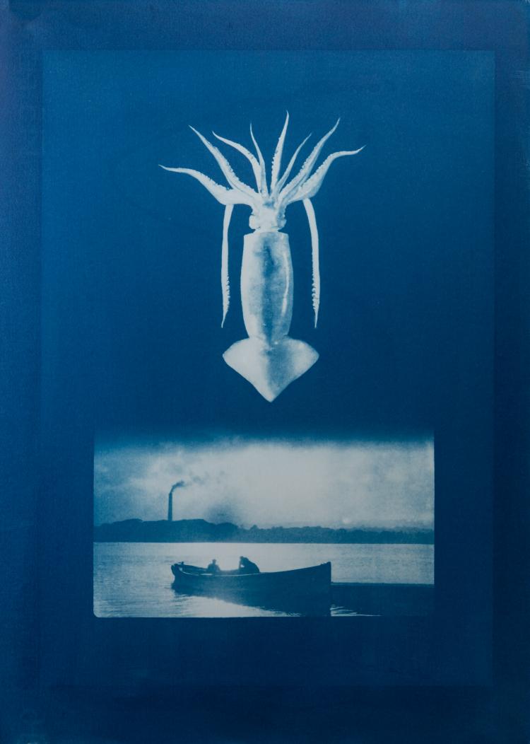 Squid. Islandmagee ferry. 1/4 V.E. Cyanotype on Fabriano © Jonathan Brennan, 2020