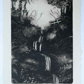 Cregagh Glen. Monotype on Fabriano Rosaspina © Jonathan Brennan
