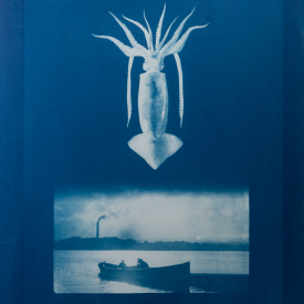 Squid. Islandmagee ferry. 1/4 V.E. Cyanotype on Fabriano © Jonathan Brennan, 2020